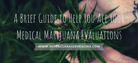 A Brief Guide to Help You Ace Your Medical Marijuana Evaluations