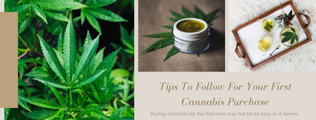 Tips To Follow For Your First Cannabis Purchase