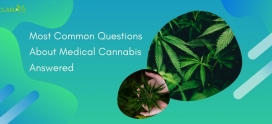 Most Common Questions About Medical Cannabis Answered