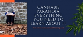 Cannabis Paranoia: Everything You Need to Learn About it