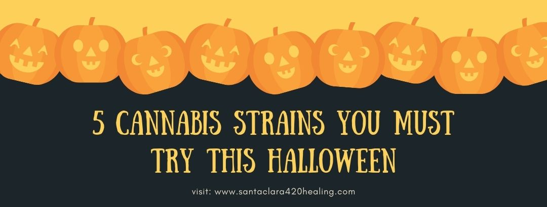 5 Cannabis Strains You Must Try This Halloween