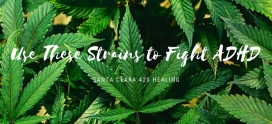 Use These Strains to Fight ADHD