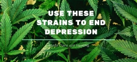 Use These Strains to End Depression